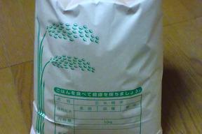 令和元年産 「夢つくし」5kg 玄米