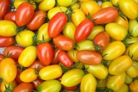 無農薬*ミニトマト~2kg
