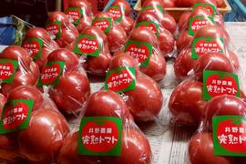 【熊本産】井野農菜園の完熟トマト 2kg