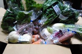 旬のお野菜詰め合わせBOX  Lサイズ /基本5品目 + 3品以上