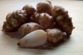 自然栽培キクイモ 5kg(土付き)