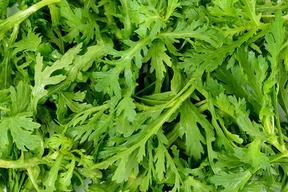 無農薬*サラダ春菊1kg
