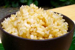 アイガモ米 玄米10㎏