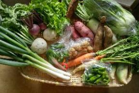 【ふじたふぁーむ】旬の野菜詰め合わせ(5〜6品)お試し用