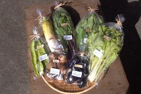 旬の自然栽培野菜の詰め合わせ(Lセット)