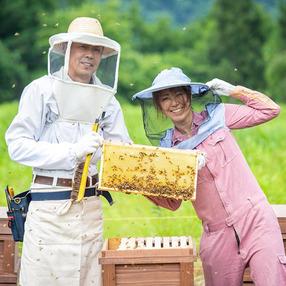 巣鴨養蜂園