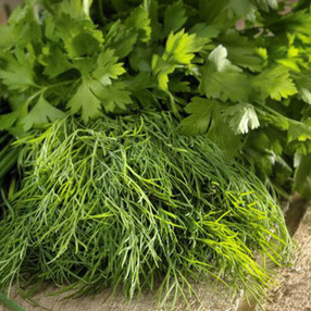 HERB STAND