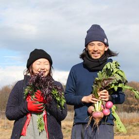 Farm in Hands