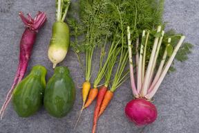 青パパイヤとカラフル根菜のサラダセット 化学合成農薬・化学肥料不使用