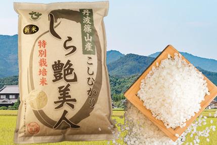 お米マイスターが作る旨みたっぷりの丹波篠山米こしひかり5㎏【新米R1年産】