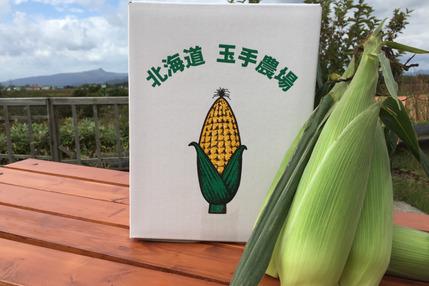【北海道】生で食べれるなまらウマいトウモロコシ《10本》
