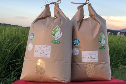 【新米】2019年産 コシヒカリ 10キロ玄米 有機肥料無農薬 精米希望の方は無料にて