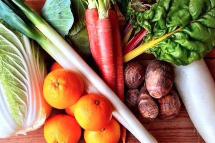 【ゼロエネルギーCO2フリー】自然農野菜セット【Sサイズ】
