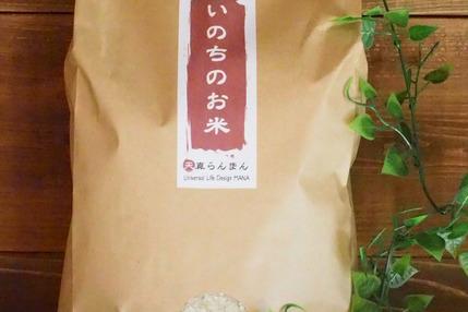 【いのちのお米】H30年度 玄米 5kg