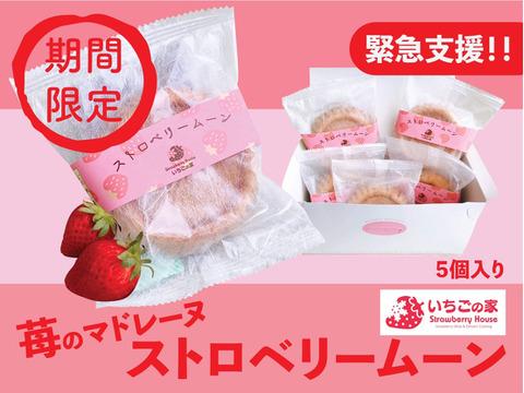 ストロベリームーン(1箱5個入)雪どけ苺使用!