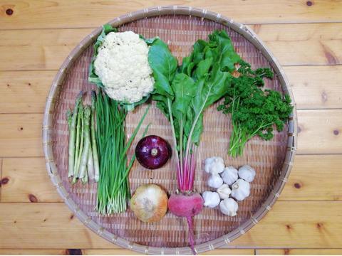 【農薬・化学肥料不使用】【クールで対応】野菜セット【新ニンニク(200g前後)付き】【5~7種類の野菜】(60サイズ箱)