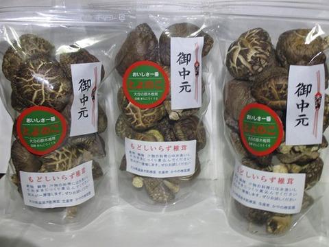 【夏ギフト】乾しいたけ肉厚どんこ(戻しいらず 100g入り3袋 原木自然栽培 大分産とよのこ)