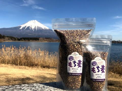 自然栽培 もち麦(玄麦・ダイシモチ) 1kg 農薬肥料不使用のスーパーフード!