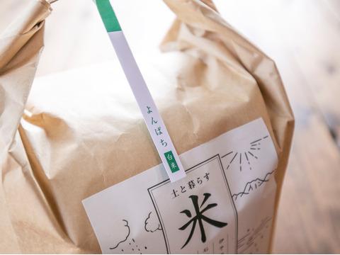 【完売御礼】R2年度/よんぱち白米10kg・ISATOの自然栽培米~もっちり甘いがお好きな方へ~