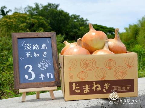淡路島産たまねぎといえばコレ『中生たまねぎターザン』3kg