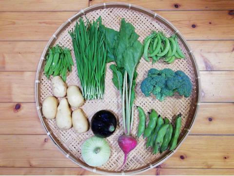 【農薬・化学肥料不使用】【クールで対応】野菜セット【新ジャガイモ(500g前後)付き】【5~7種類の野菜】(60サイズ箱)