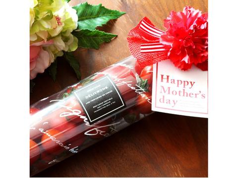 【トマトタワー】トマト おしゃれ ギフト プレゼント 母の日 敬老の日 内祝い 出産祝い 手土産 健康 美容 産地直送