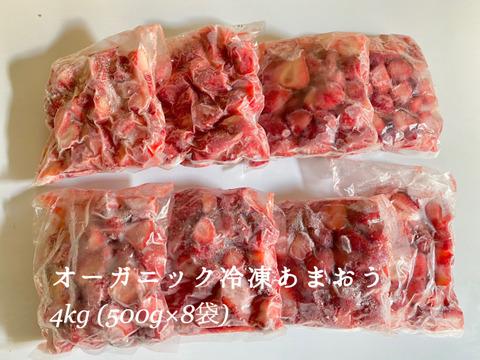 完熟!オーガニック冷凍あまおう 4kg(500g×8)