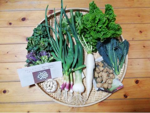 【農薬・化学肥料不使用】【クールで対応】野菜セット【グリーンカーテン用ナタマメ種子付き(栽培説明書付き)】【5~7種類の野菜】【60サイズ箱】