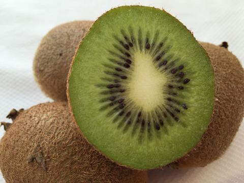 【有機JAS】無農薬キウイフルーツ「ヘイワード」ご家庭用(4kg)
