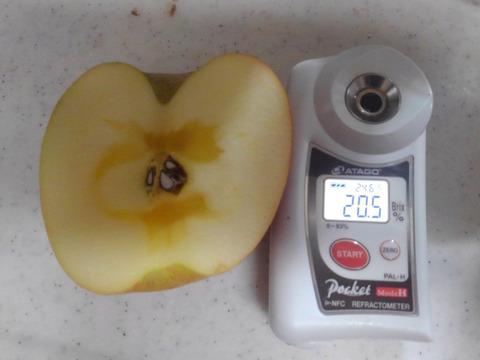 【割引セール中!】糖度15度以上保証!旨味爆発!サンふじ約3キロ※数量限定