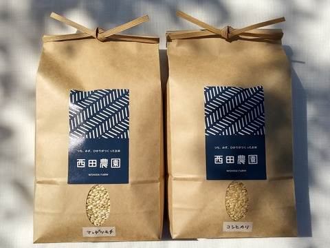 令和2年産・玄米味比べ 特別栽培米コシヒカリ 玄米2kg&マンゲツモチ玄米2㎏  低農薬(80%以上削減)