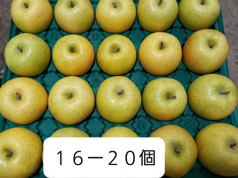 これが本場の王林です!!!!!!!! ⭐黄色いりんごの王様⭐ 完熟シャキシャキ食感 王林  お徳用5kg18ー23個