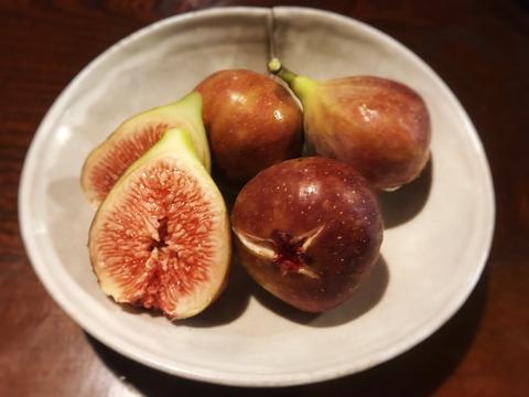 自然栽培のイチジク(蓬莱柿)