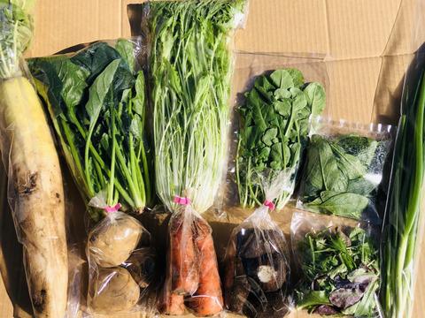 【初回限定BOX】有機JAS!オーガニック野菜セット