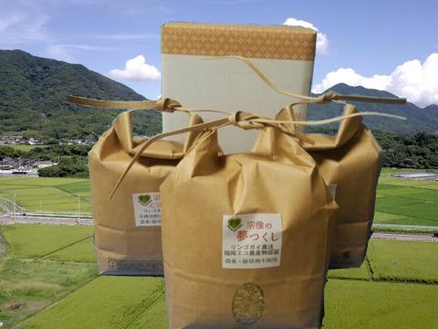 農薬・除草剤不使用の「にこまる・元気つくし・夢つくし」玄米セット(各1kg)特別栽培米 新しい年にいかがですか!