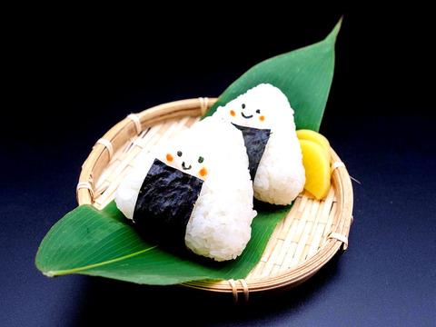 【山形県産 美味しい 「つや姫・雪若丸セット」各5kg】白米 無洗米 特別栽培米 10kgセット 2020年 新米  大評判の美味しい無洗米セットです♪♪