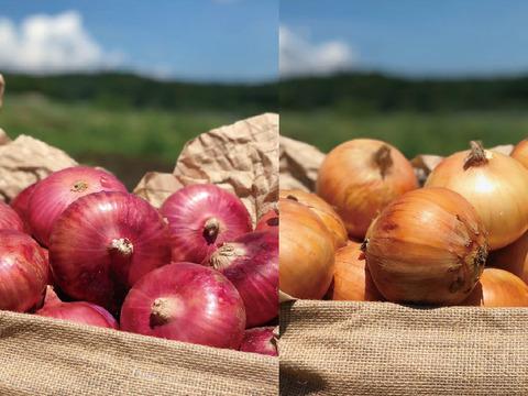 オーガニック赤玉ねぎと玉ねぎのセット【有機JAS認証】