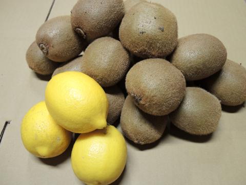 ☆和歌山産☆ キウイ2kg(追熟必要)+ お試しレモン3個
