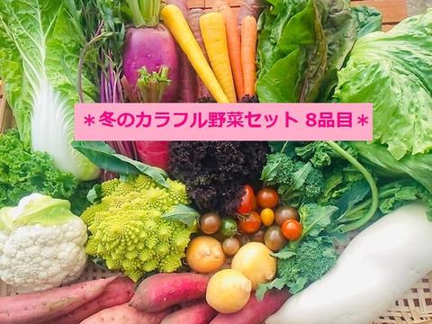 *新鮮朝採り*たてやまかおり菜園の『3月のカラフル野菜セット8品目』