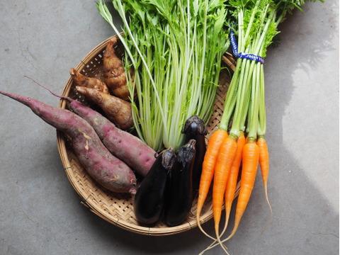 ⭐️本物のオーガニック⭐️有機野菜お試しSサイズセット【必ず5種類】いつでも旬の味をお気軽に!