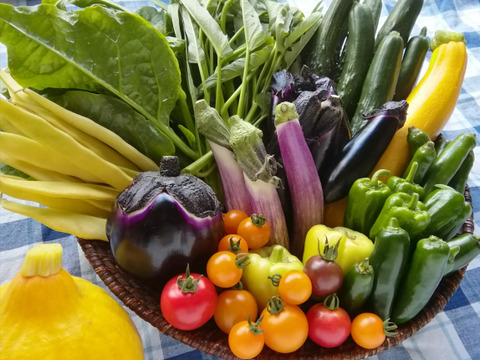 無農薬野菜セットM
