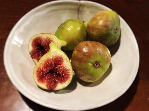 自然栽培のイチジク(ブリジアソットグリース)