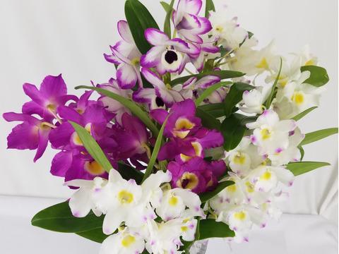【人気商品!! 】 ちょっとした贈り物に、蘭の花束をどうぞ♡