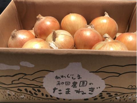 【淡路島  和田農園】淡路島玉ねぎ10kgM〜LLサイズ 完熟中生