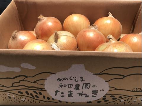 【淡路島  和田農園】完熟中生 淡路島の玉ねぎ 10kgM〜LLサイズ