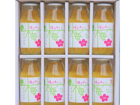 【自然栽培】梅ドリンク 30%うめ果汁入り飲料(180ml×8本セット)