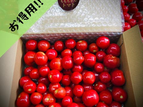 """【数量限定1キロ箱×2】薄皮新食感!""""ももちゃんトマト""""(2キロ)"""