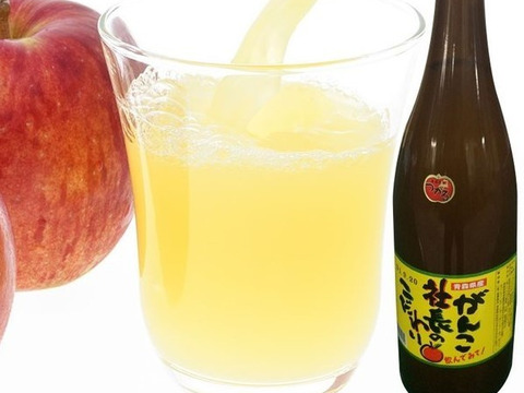 ストレート!青森県産りんごジュース  1升瓶 6本セット