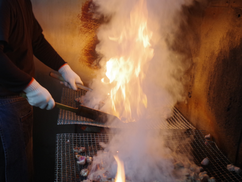 【七輪手焼き!】鹿野地鶏手羽先炙り焼き2本入り×10pセット