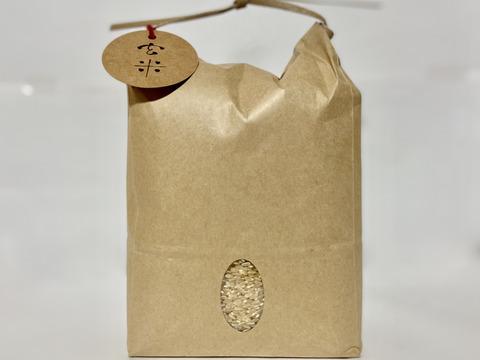 【店頭販売されない希少品種・農林22号】新米 農薬・除草剤不使用 玄米5キロ